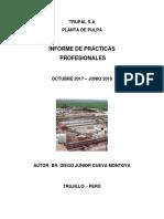 PRACTICAS TRUPAL.docx