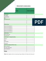Ejemplo de Presupuesto y Cronograma