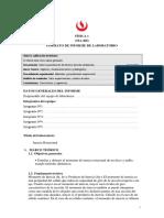CS33_MA466_L5_Arróspide.docx