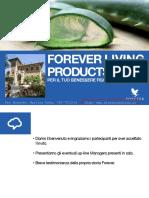 Presentazione Business Forever - Flip Chart - offerta di lavorare da casa con orario libero