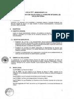 20131224 MINSA NT Atencion Salud Materna
