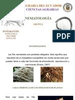 nematologia.pptx