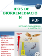 5BA Tipos de Biorremediacion
