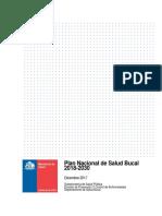 Programa Nacional de Salud Bucal 2018-2030