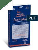 Guia Practica Profesional. Procesal Laboral. 2015. Grisolia