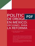 Revista Mexicana de Ciencias Penales / Lisa María Sánchez Ortega y Víctor Gutiérrez