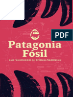 Patagonia Fossil