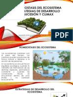 HOMEOSTASIS DEL ECOSISTEMA.pptx