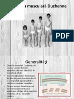 Distrofia Musculară Duchenne