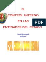 El Control Interno en Las Entidades Del Estado