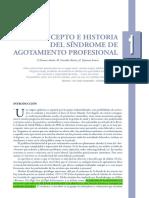 1.3 Historia burnout.pdf
