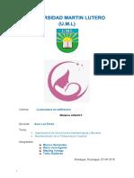 Manual Vigilancia Desarrollo Infantil Aiepi 2011