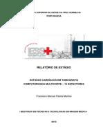 Relatório Estágio Mttim - Francisco Martins - Final (1)