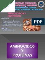 PROTEINAS-1