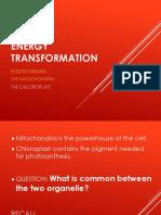 Energy Transformation Mito