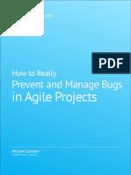 Agile Testing Whitepaper