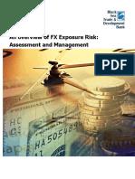 Risk management FX