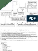 Instructiuni RIA FP
