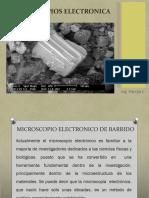 2. Microscopia Electronica