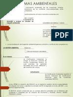 NORMAS AMBIENTALES derecho minero. (1).pptx