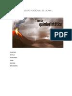 Quimiosintética.docx
