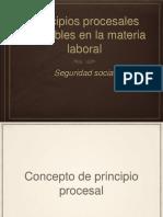 Principios procesales laboral.pptx