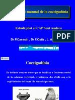 tratamiento cocigodinia cat.ppt