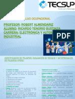 IDENTIFICACIÓN DE PELIGROS, EVALUACIÓN DE RIESGOS ricardo.tenorio.pdf