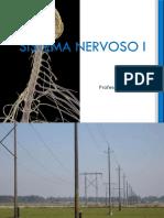 8- Sistema Nervoso I.pdf