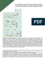 282061378-Fisiopatologia-de-La-Malaria.docx