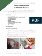 PRÁCTICA 7. Hemoparasitos - Malaria