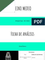 Ficha de Análisis