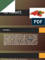Diapositiva Tomate
