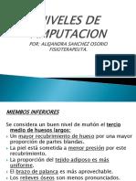 Ppw3 Niveles de Amputacion