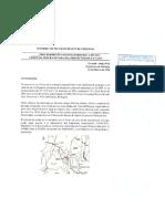Informe Pericial_ Sr. Gonzalo Amigo Pisk_ Comunidades Valle del Huasco.pdf