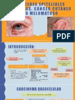 Carcinomas No Melanocíticos