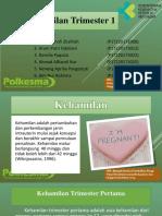 Maternitas PPT.pptx