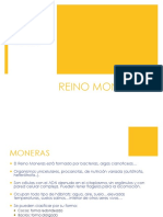 Trabajo Equipo66 HDOMINO MONERAS