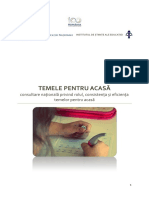 Raport_Teme-acasa_final.pdf