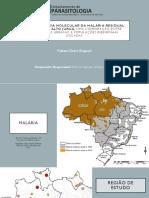 Apresentação projeto EPIDEMIOLOGIA MOLECULAR DA MALÁRIA NO VALE DO JURUÁ