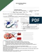62147121-Fisa-de-Evaluare-Sistem-nervos-clasa-a-VII-a.doc