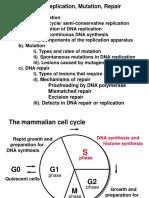 Dna  mutation  3.ppt