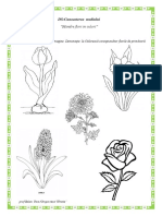 DS fisa flori