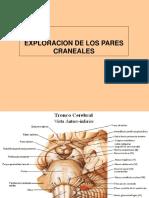 Semilogia Pares Craneales