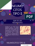 Neumocitos Tipo II
