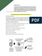 Inhibidores de La Dipeptidil Peptidasa 4 (1)