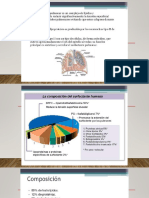 surfactante pulmonar