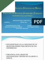 Expo Patogenicidad y Virulencia