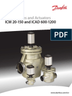 ICM-ICAD
