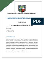 Informe 8 - Div. de La Vida - Plantas